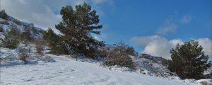 Nevada provocada por una entrada de gregal. Sierra de Aitana, Alicante. (Foto Samuel Biener).
