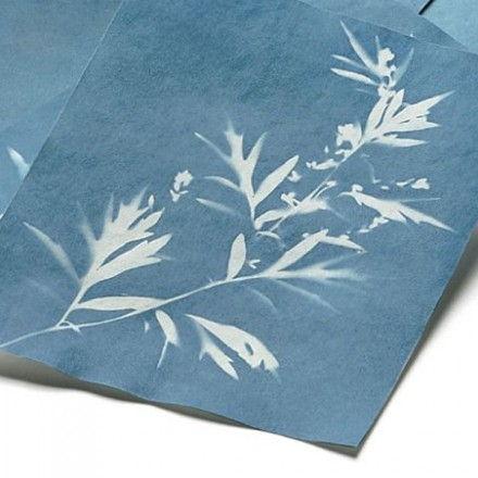 Papel fotosolar 20 hojas 14 x 19 cm
