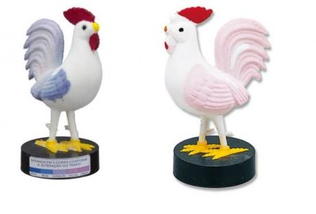 El gallo del tiempo